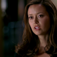 Terminator: The Sarah Connor Chronicles Season 1, episode 9: What He Beheld