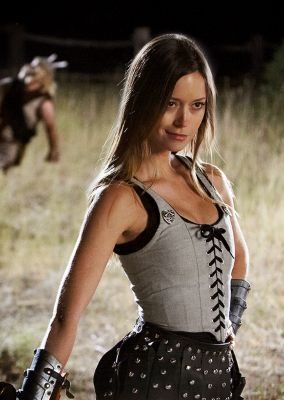 Was KNIGHTS OF BADASSDOM just a thinly-veiled excuse to put Summer Glau in a corset and make her do high kicks?